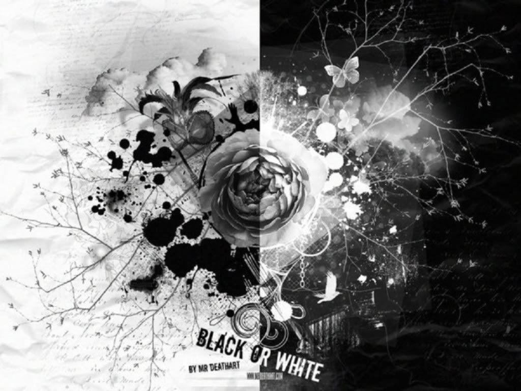 Wallpapers For > Black And White Rose Backgrounds