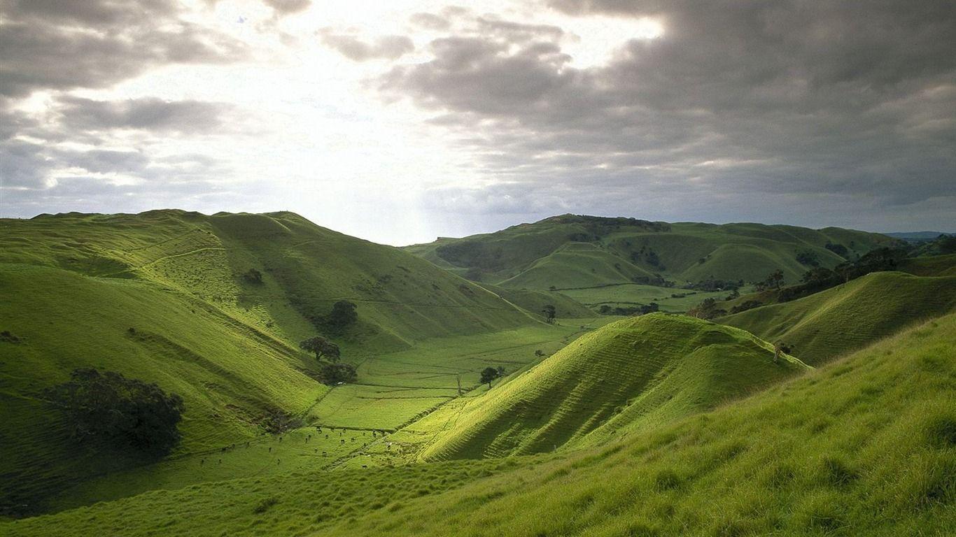 Новая зеландия Hd: New Zealand Wallpapers