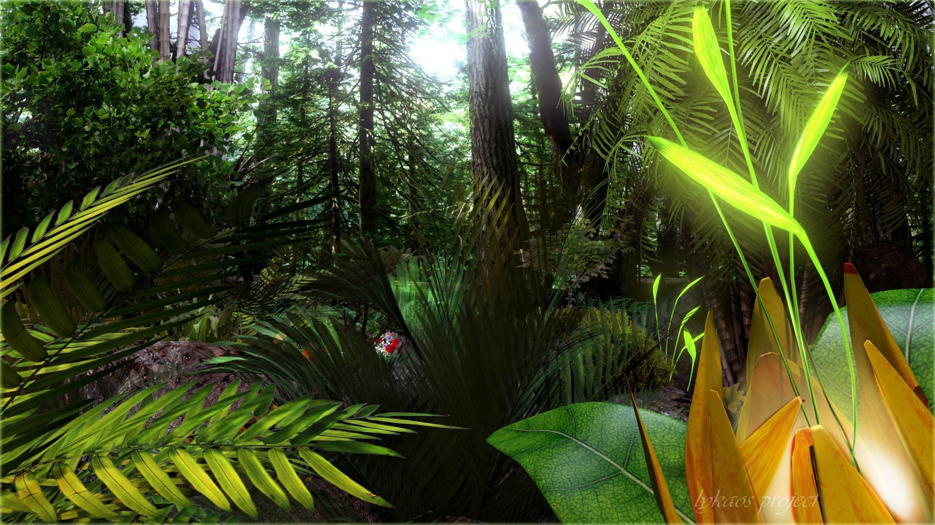 tropical forest wallpapers wallpaper cave