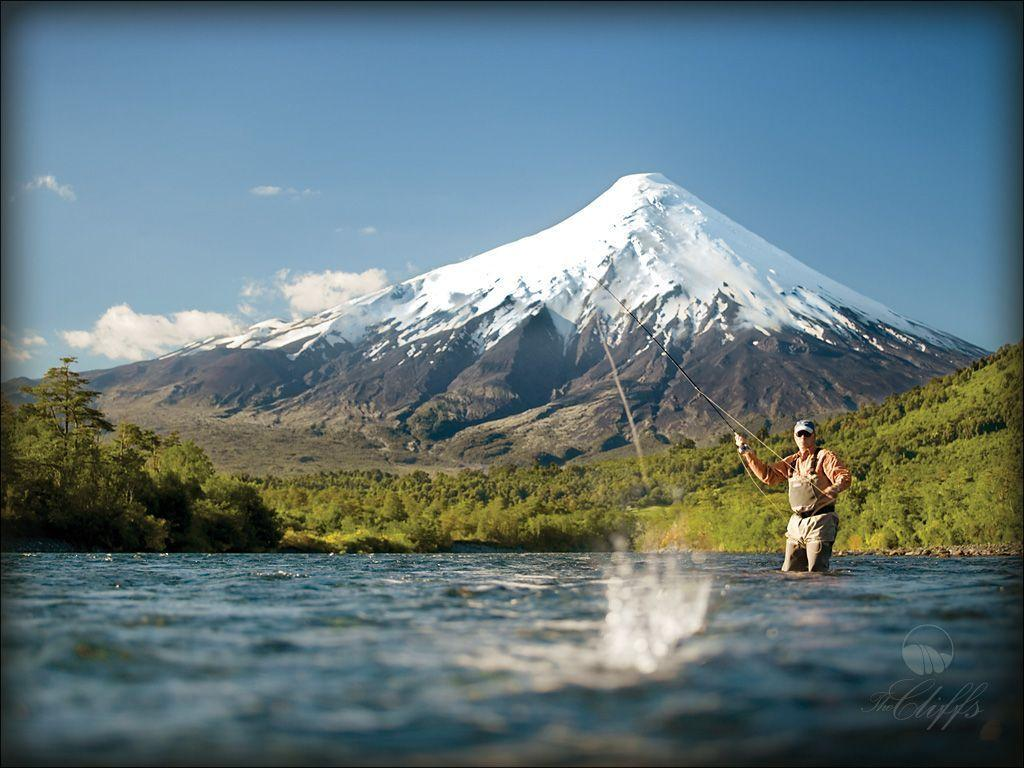 trout fly fishing wallpaper - photo #25
