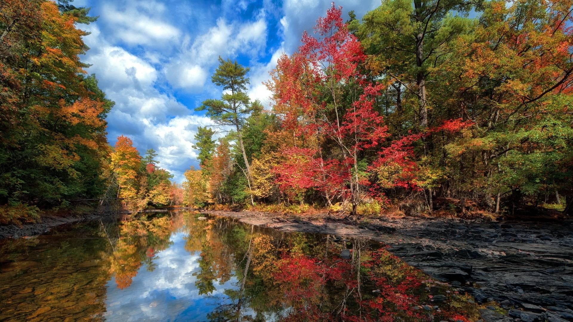 Autumn HD Wallpapers - Wallpaper Cave