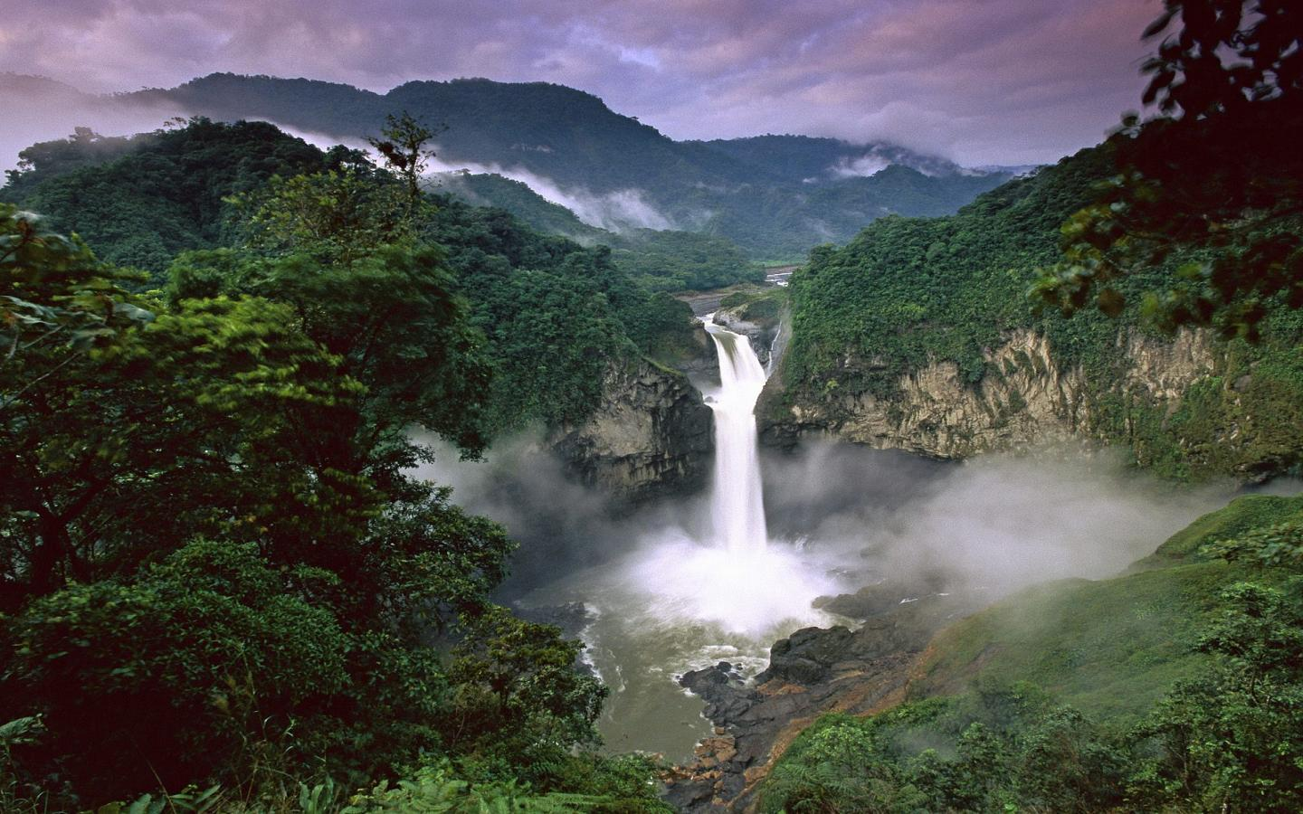 Beautiful rainforests wallpapers