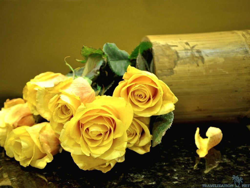 """the yellow wallpaper and a rose Comparison and contrast of the yellow wallpaper and the rose for emily eng 120 a rose for emily and the yellow wallpaper """"a rose for emily'' by william."""