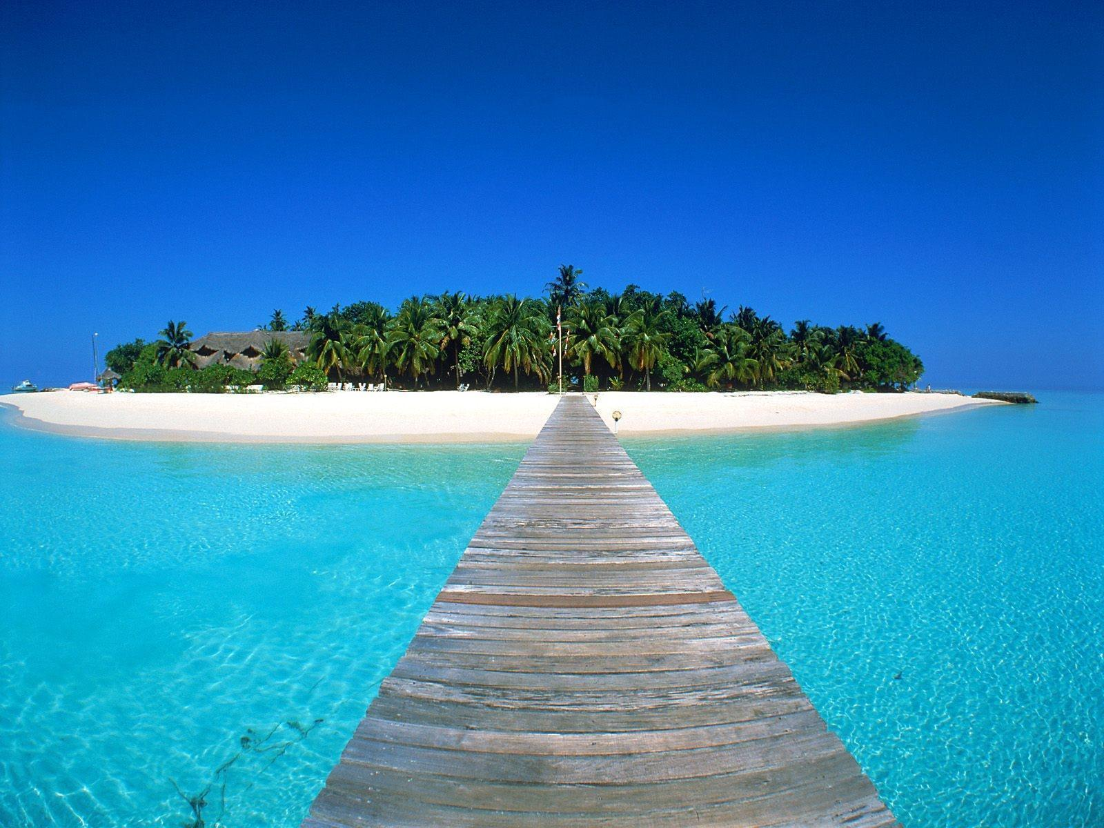 Tropical Wallpapers k Android Apps on Google Play