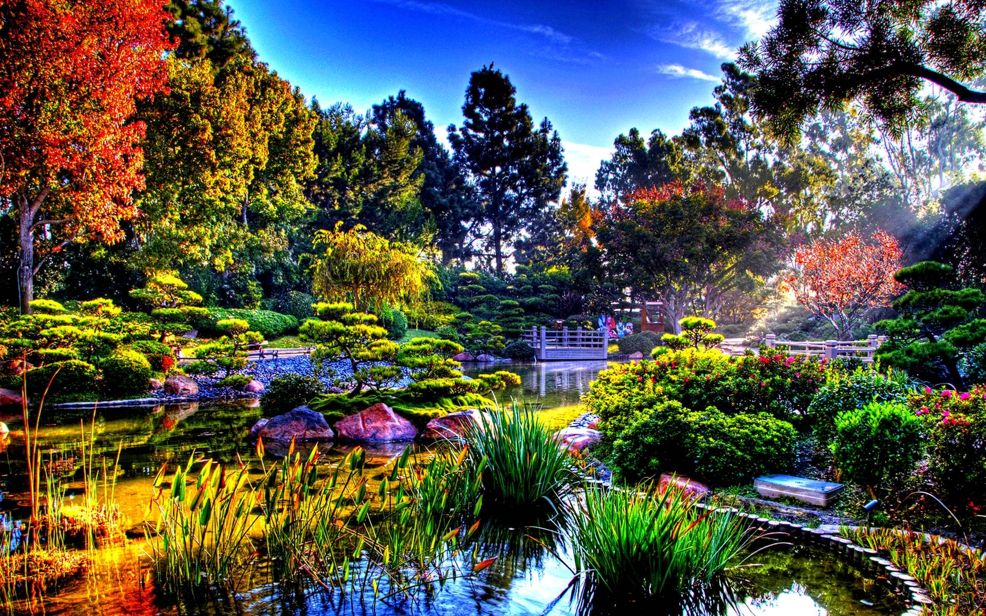 Japanese gardens wallpapers wallpaper cave for Japanese garden bushes