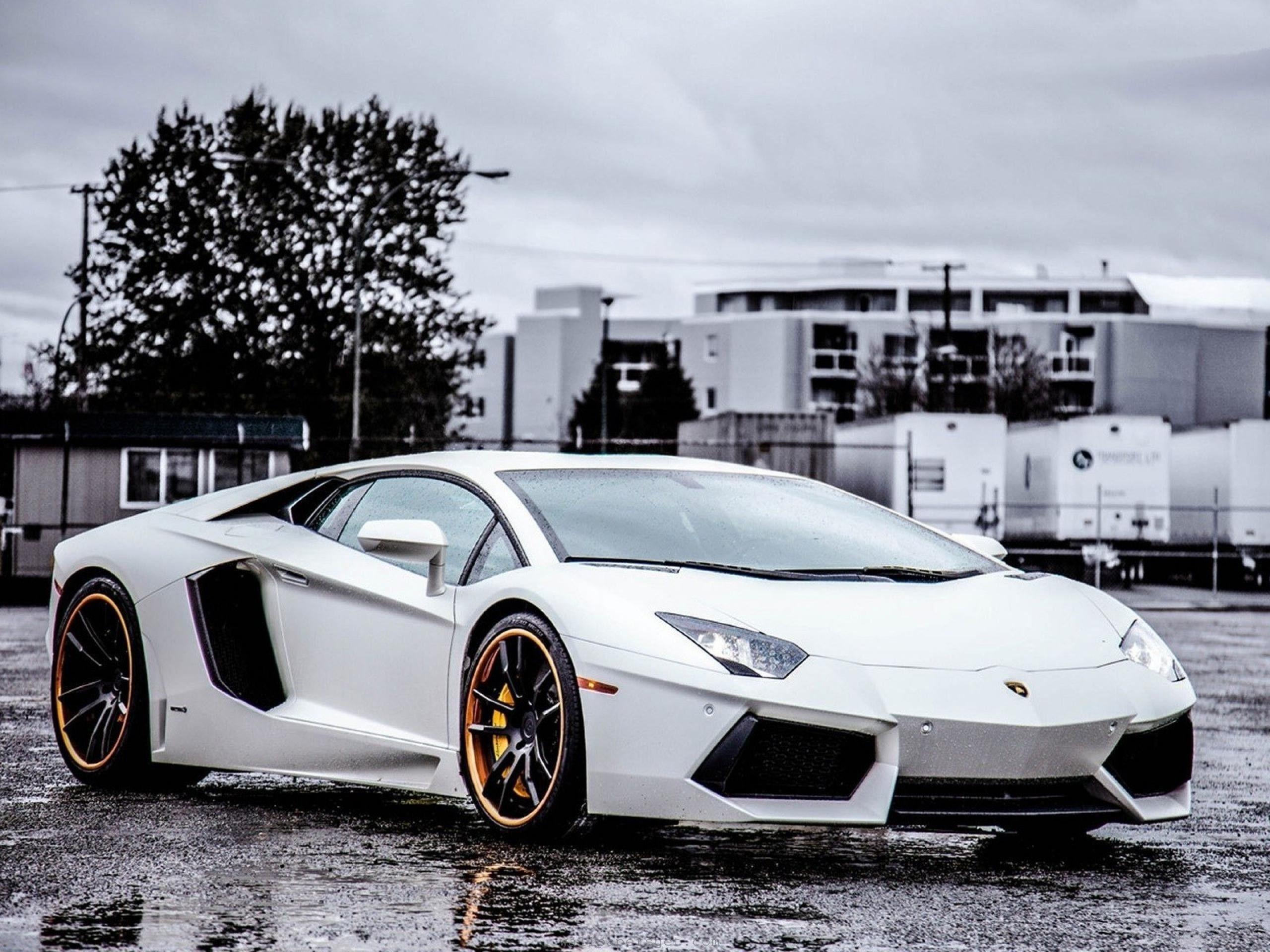 White Lamborghini Wallpapers Wallpaper Cave