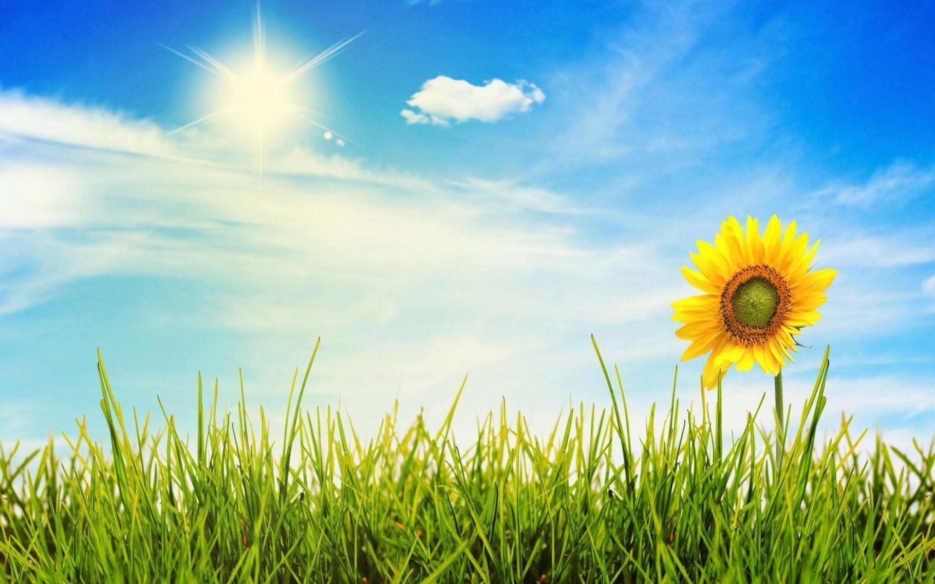 A beautiful sunny day | Flickr - Photo Sharing!  |Sunny Beautiful Day