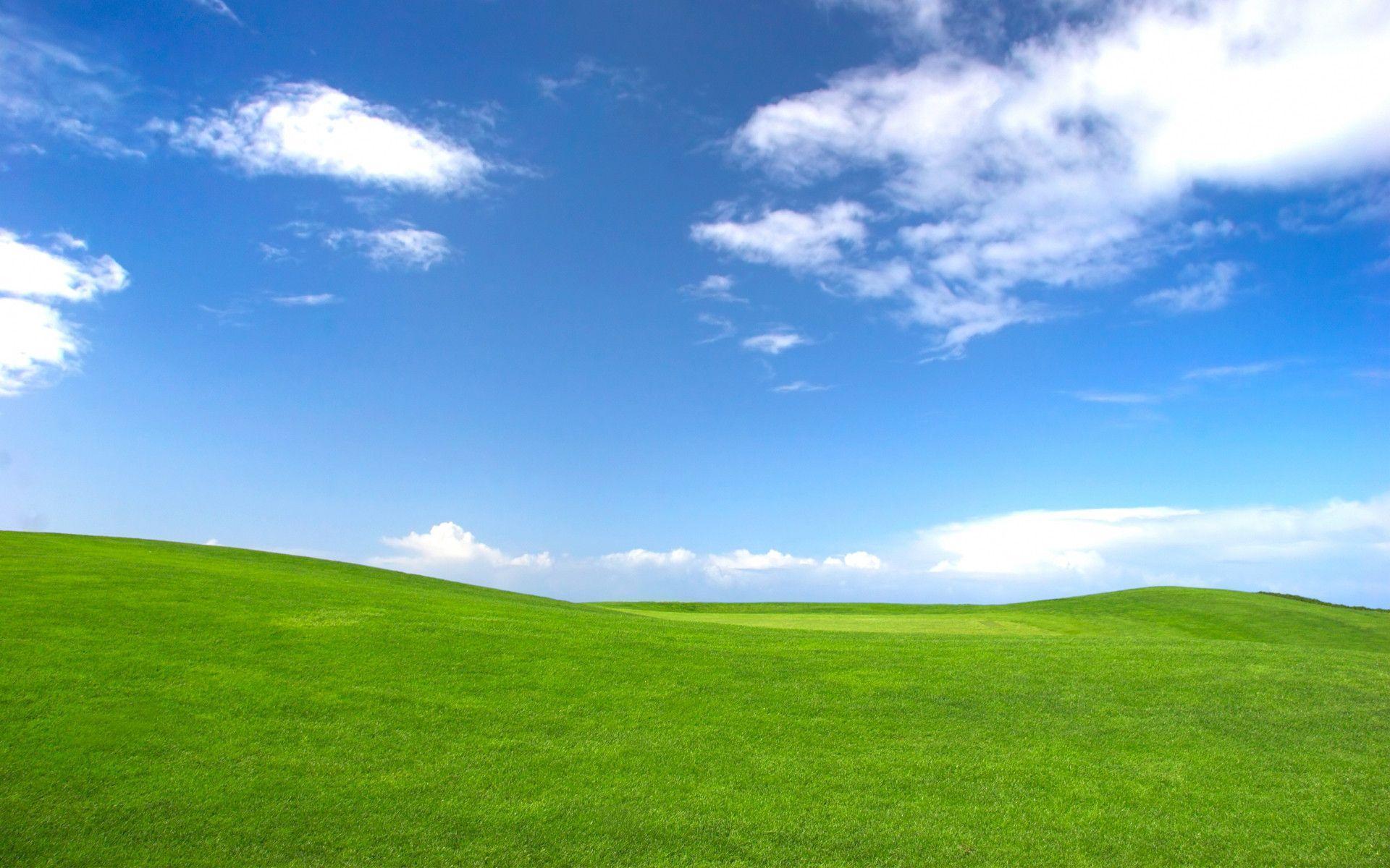 MicrosoftがXP向けの「Microsoft Security Essentials …
