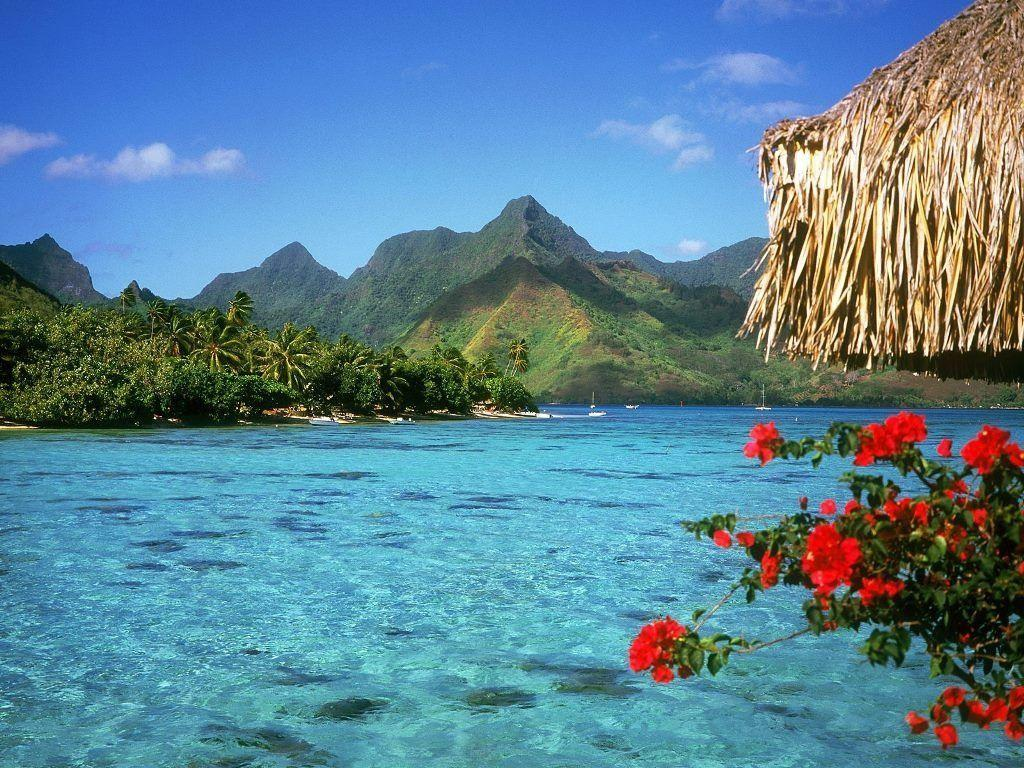 nature wallpapers bora bora beach