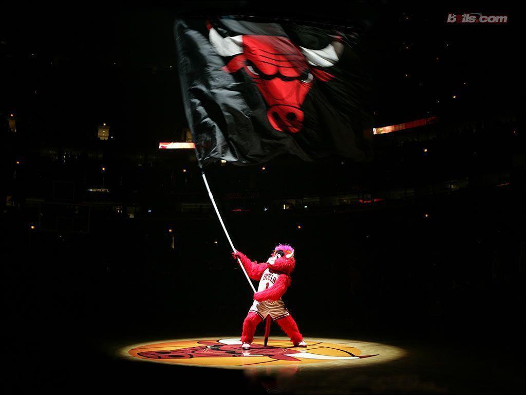 BULLS: 2005.06 Chicago Bulls Wallpaper