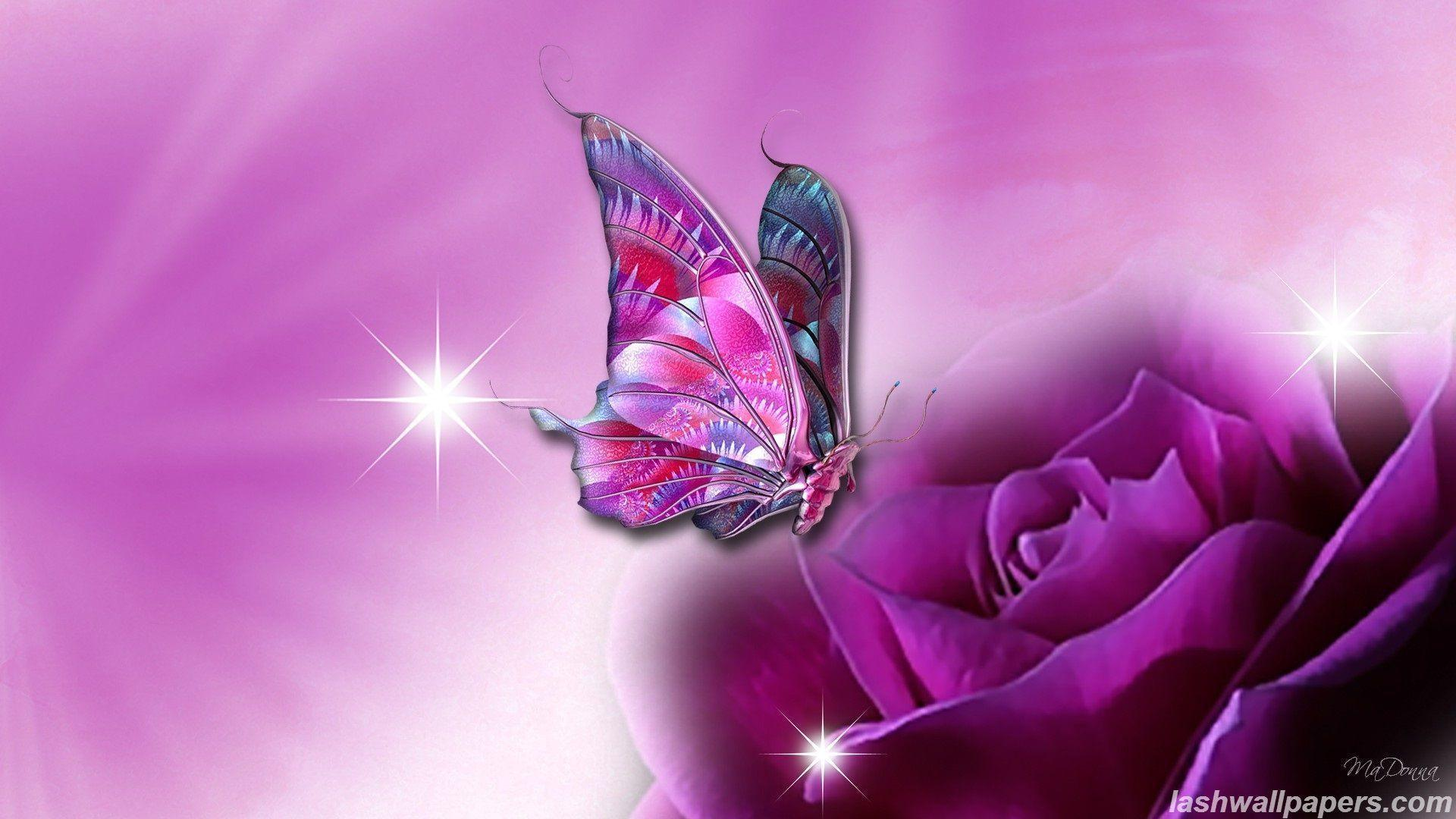 butterfly backgrounds free wallpaper cave