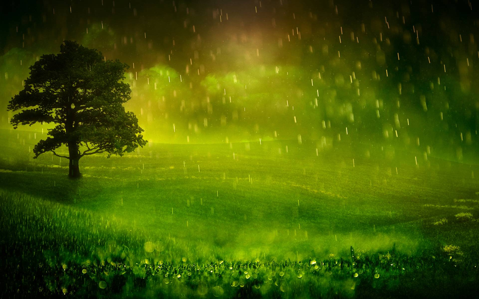 Nature Rain Wallpapers Wallpaper Cave