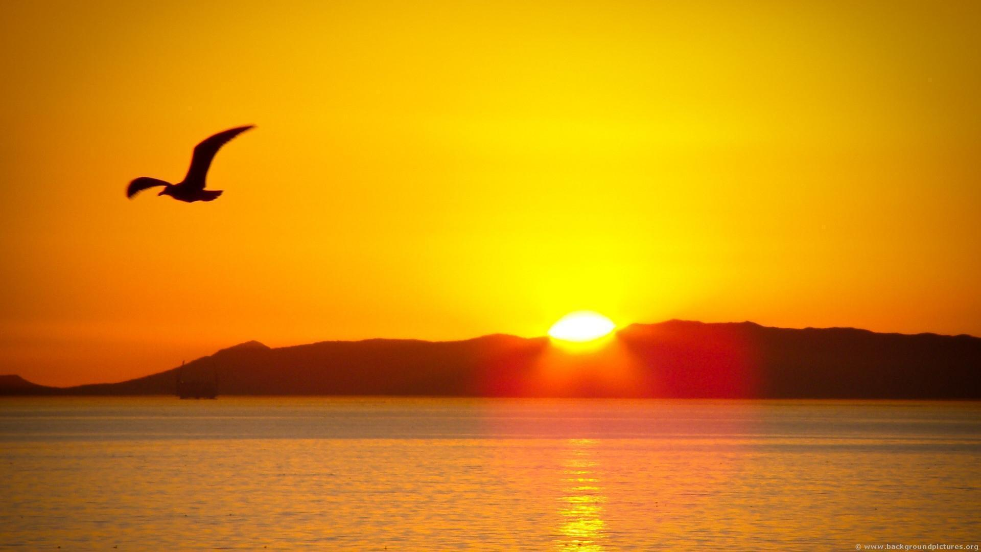 photo island sunrise screensavers - photo #41