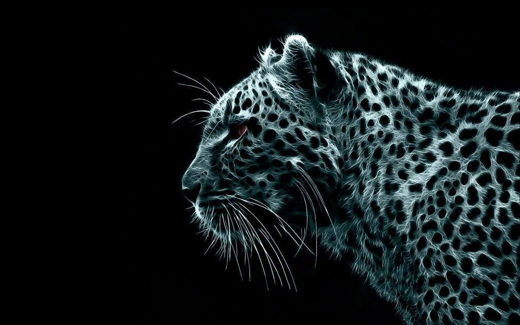 Pix For > White Cheetah Wallpaper