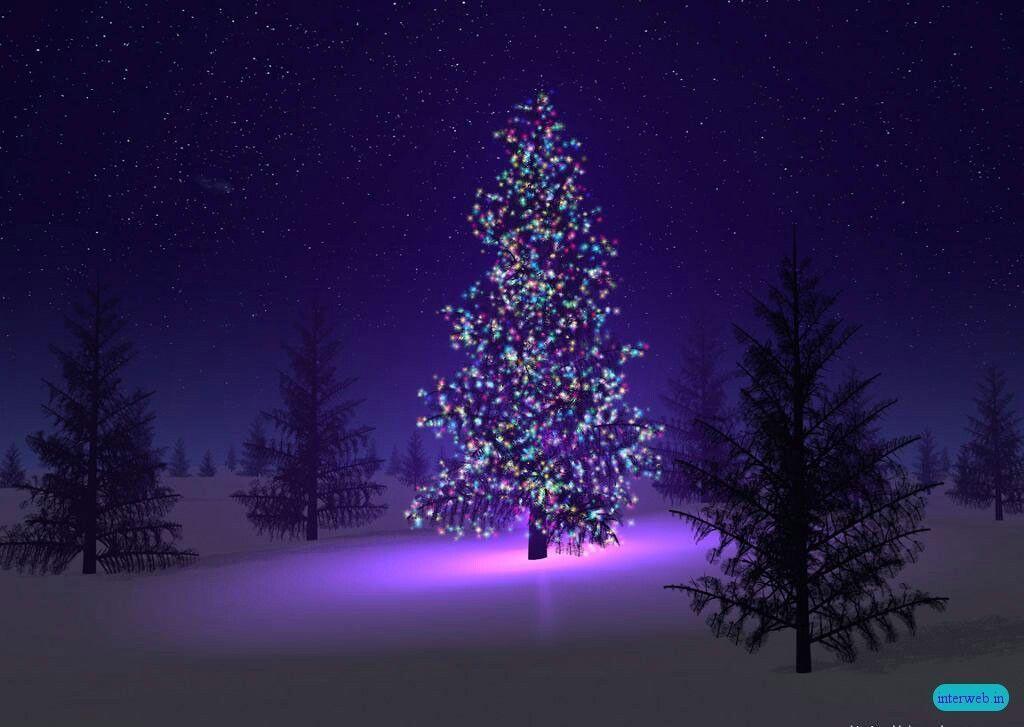 Christmas Lights Snow Desktop Wallpaper