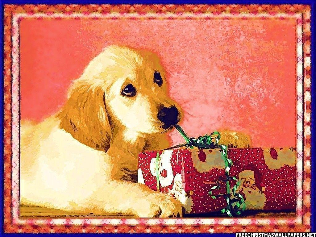 Christmas dog wallpapers wallpaper cave for Natale immagini per desktop