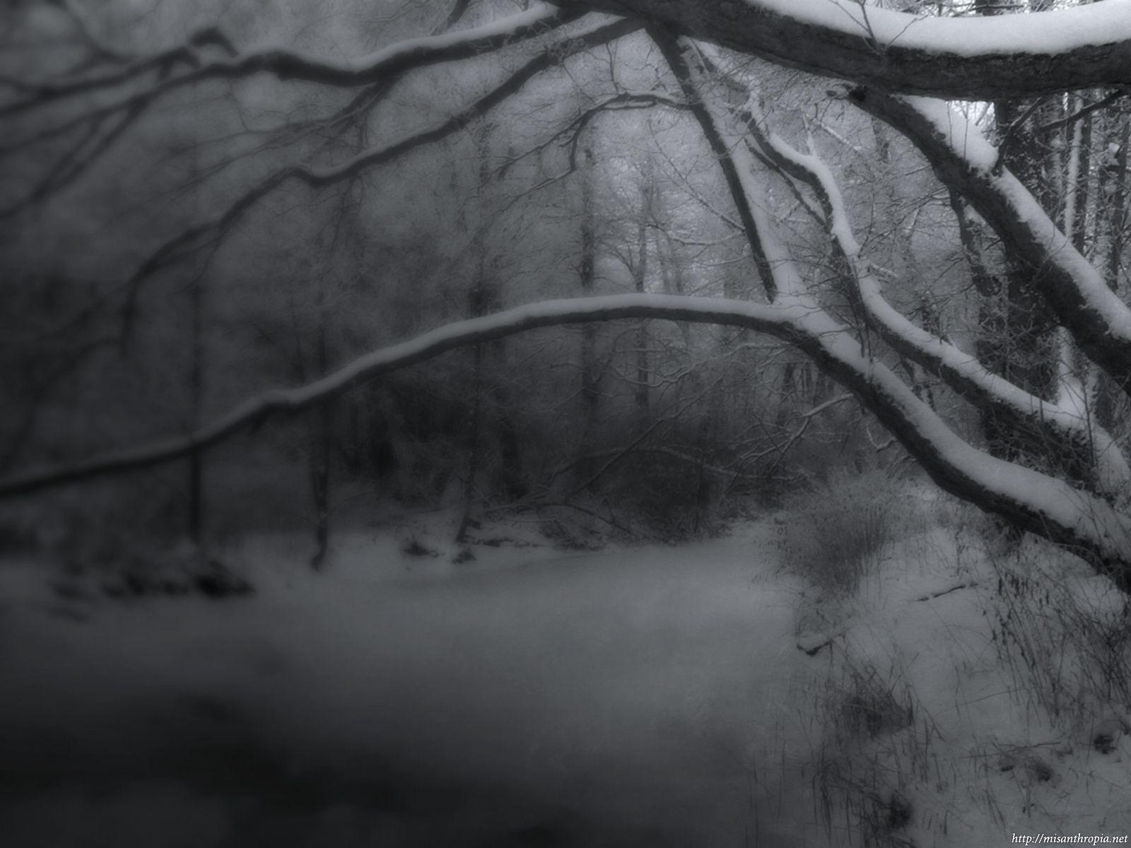 white dark snow cool - photo #20