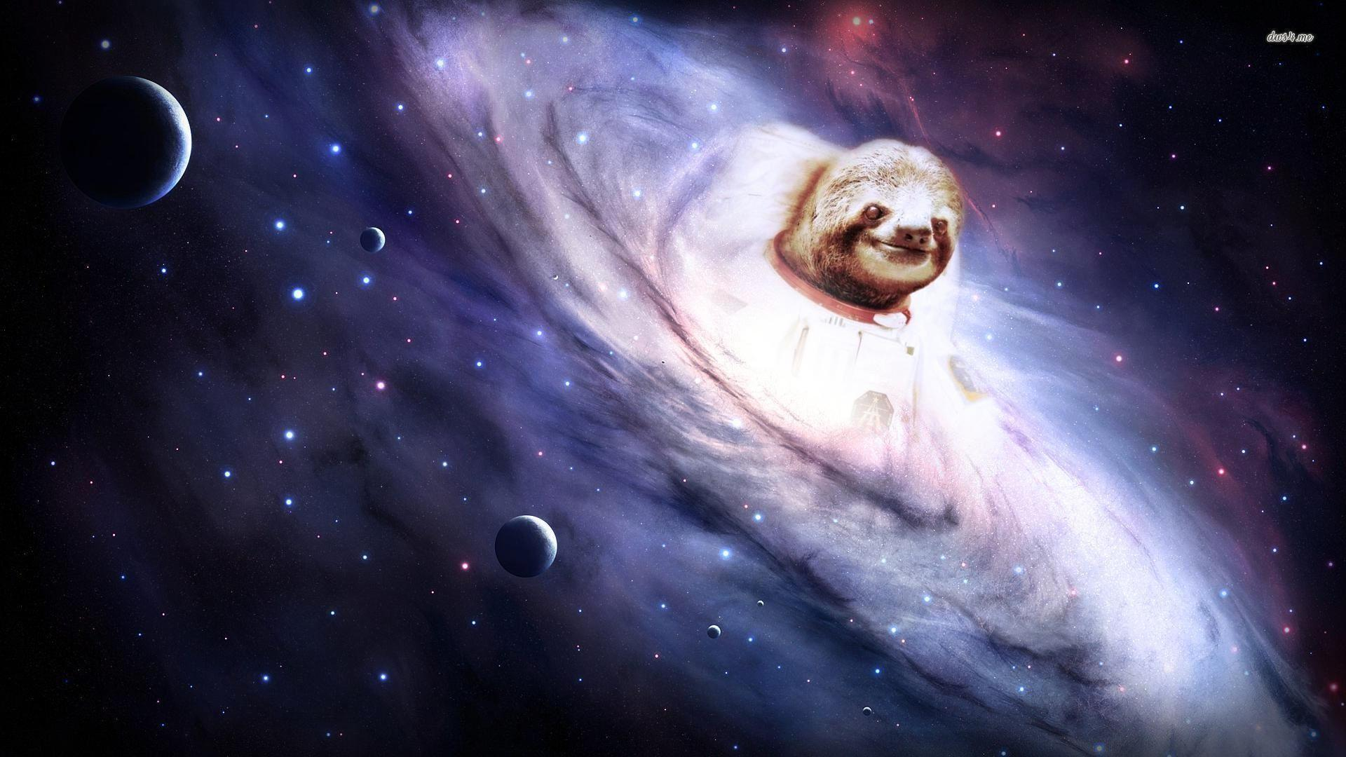 sloth astronaut facebook cover - photo #25