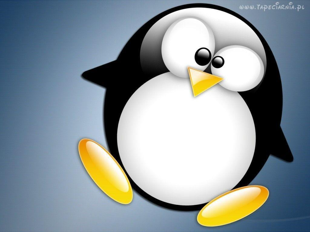 Download Linux Tux Wallpaper 1024x768 | Wallpoper #262880