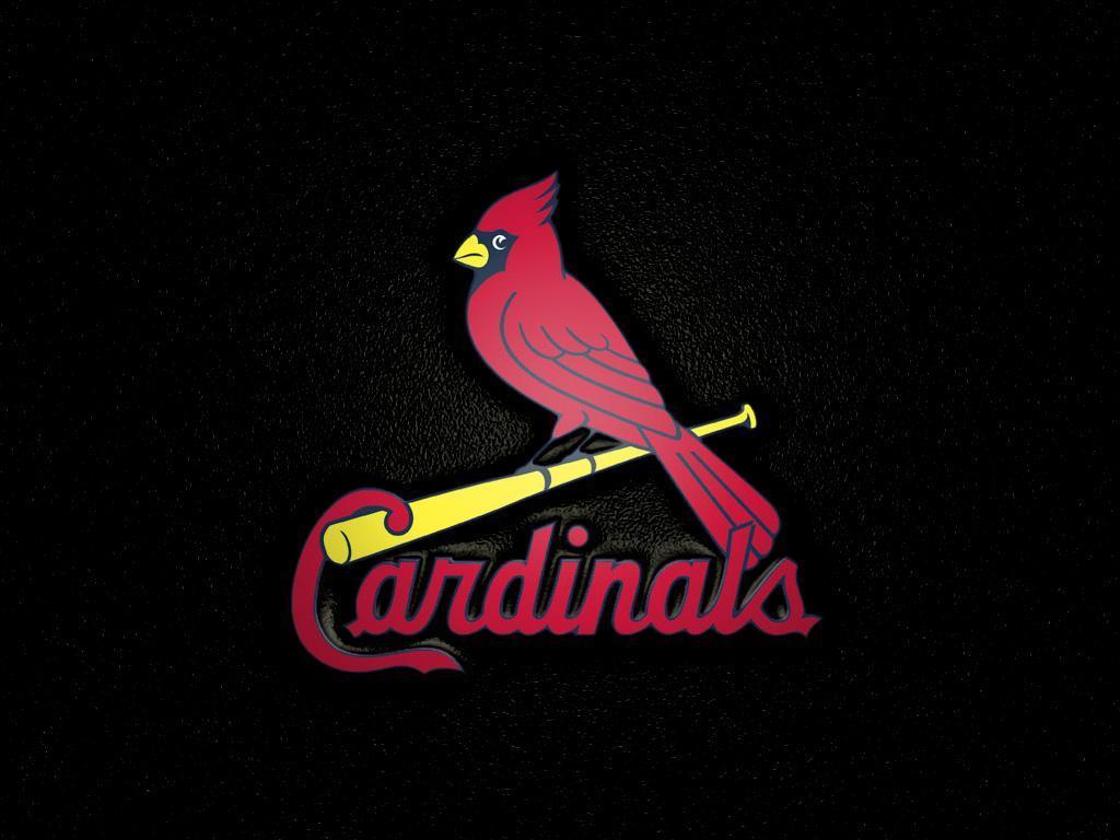cardinals wallpaper - photo #5