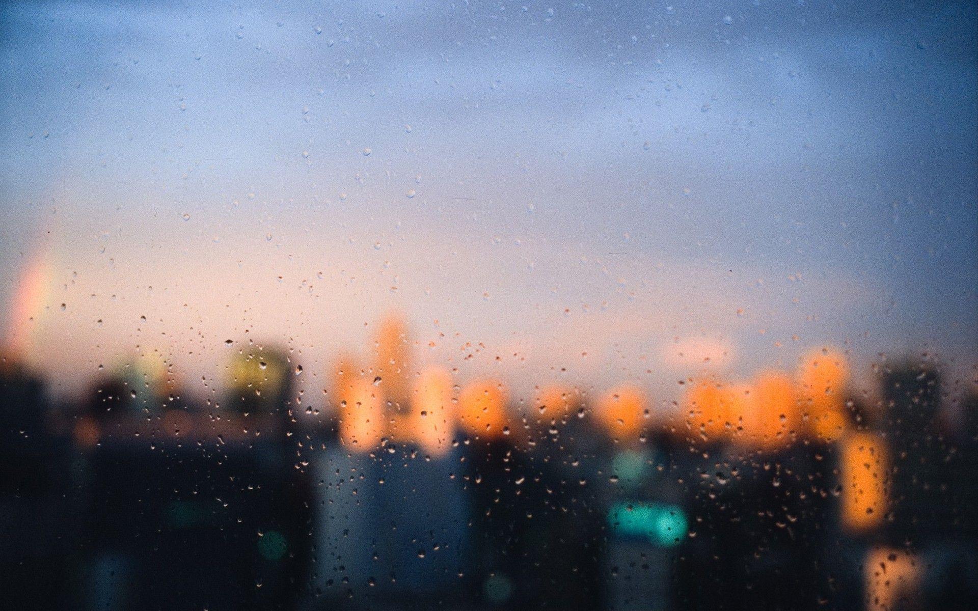 window background - photo #14