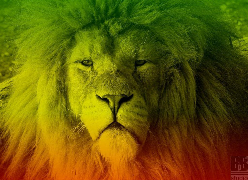 Lion of judah by bbdstudio