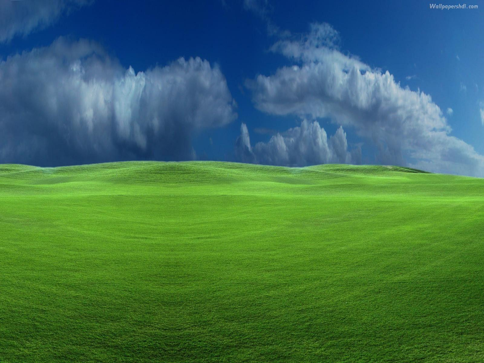 Storm Windows XP Widescreen Wallpaper Hd Background 47757 Label