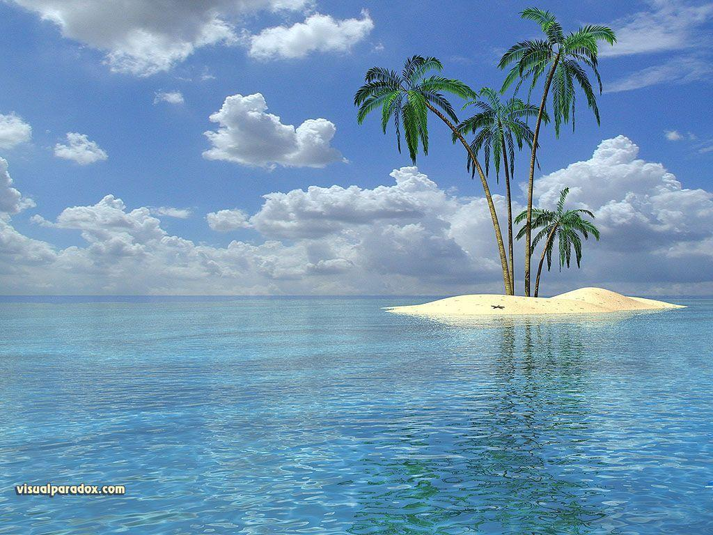 Free Tropical Wallpaper Backgrounds