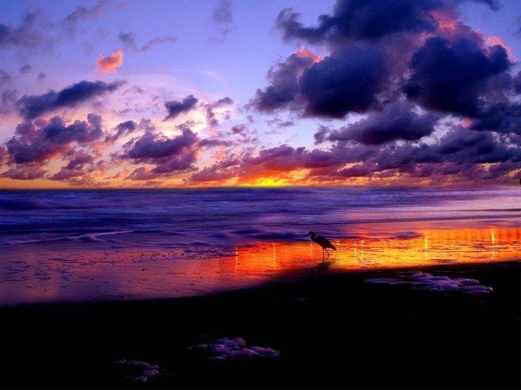 Beach Sunset Wallpaper Desktop Hd 10 HD Wallpapers