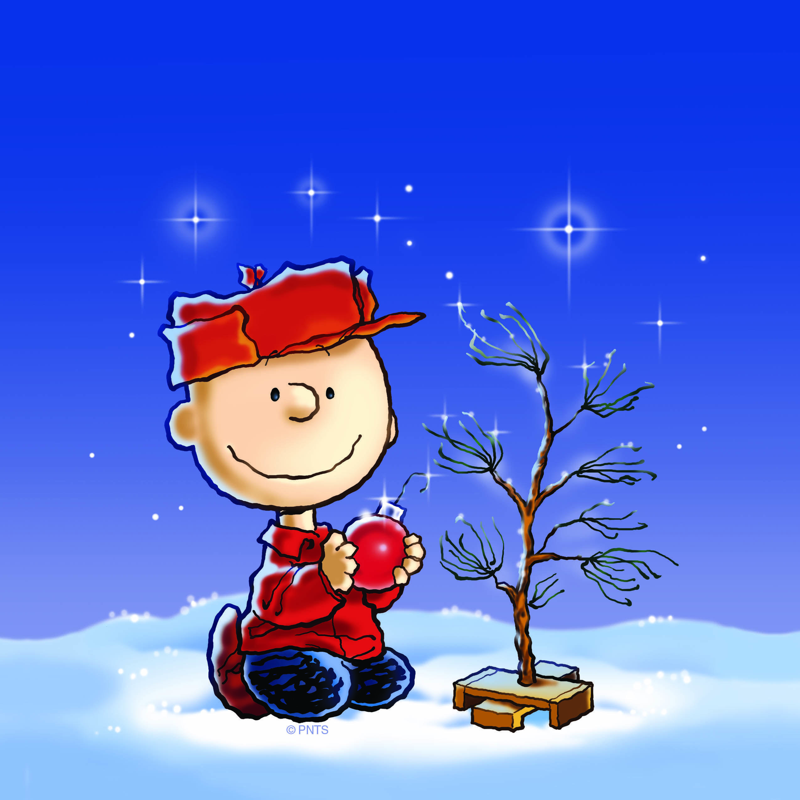 Picture Of Charlie Brown Christmas Tree