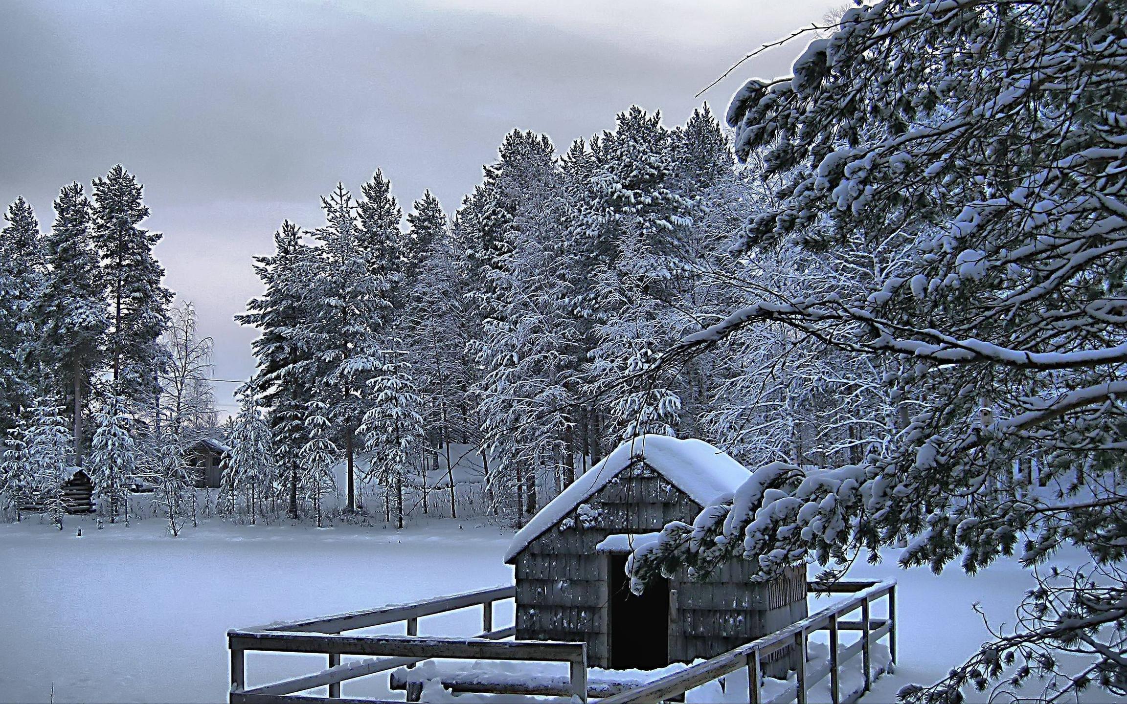 winter scene desktop backgrounds wallpaper cave