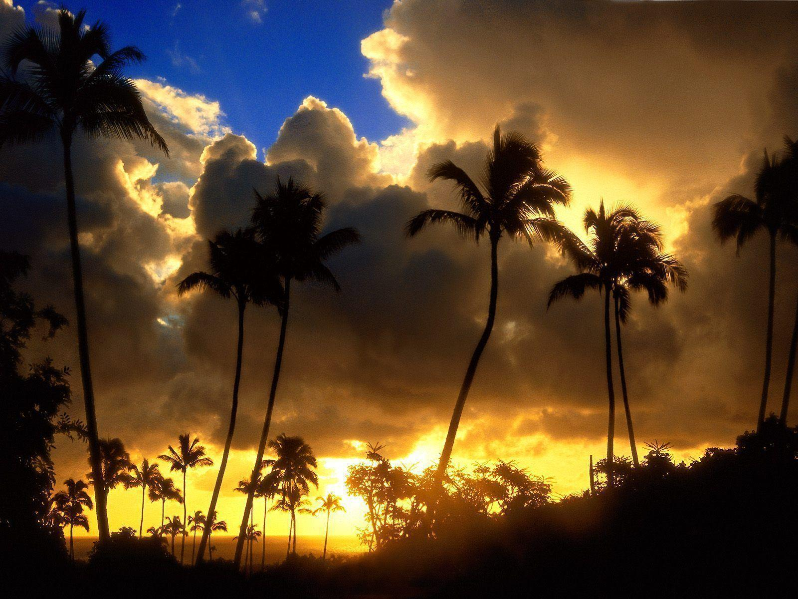Desktop Wallpapers · Gallery · Travels · Kauai Hawaii