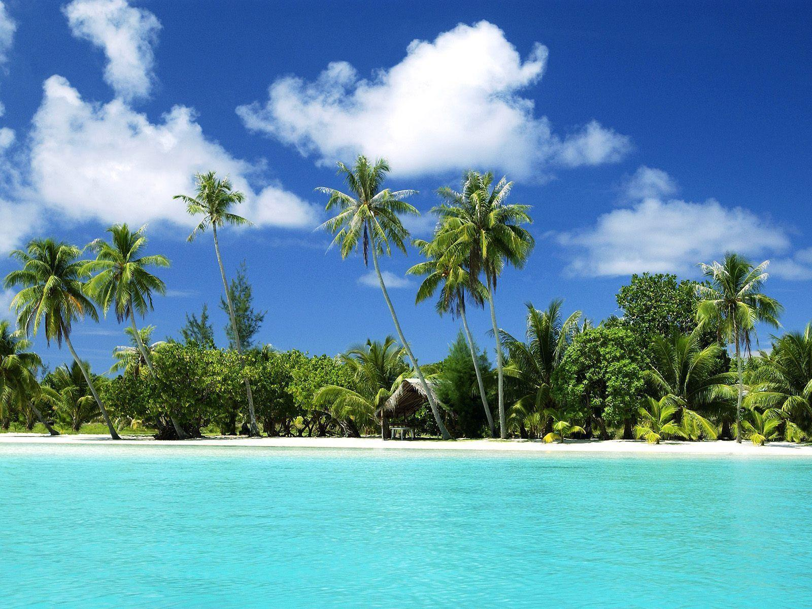 Tropical Beach Wallpapers Desktop Free Desktop 8 HD Wallpapers