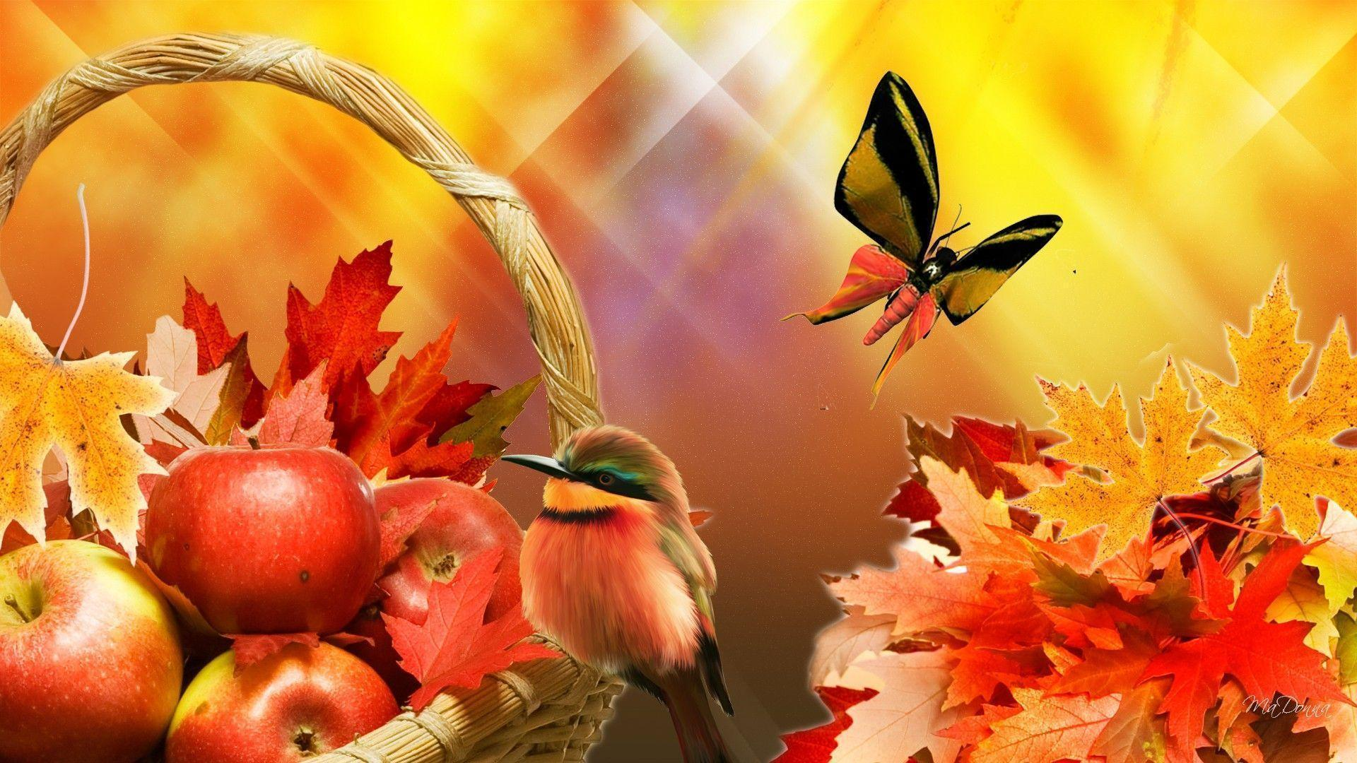 Image For > Apple Harvest Wallpapers