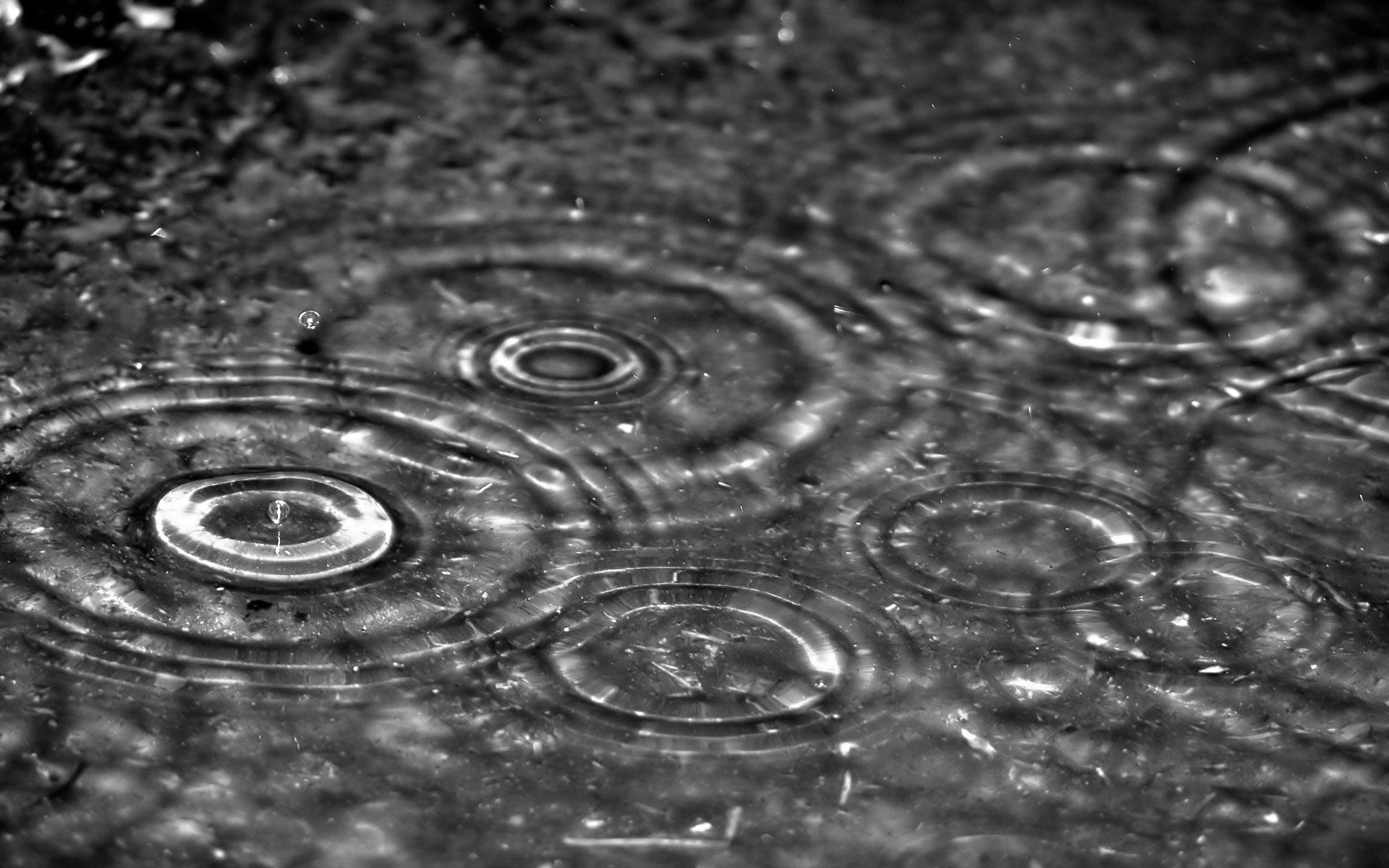 tntn photos Rain Wallpaper Hd | tntn photos