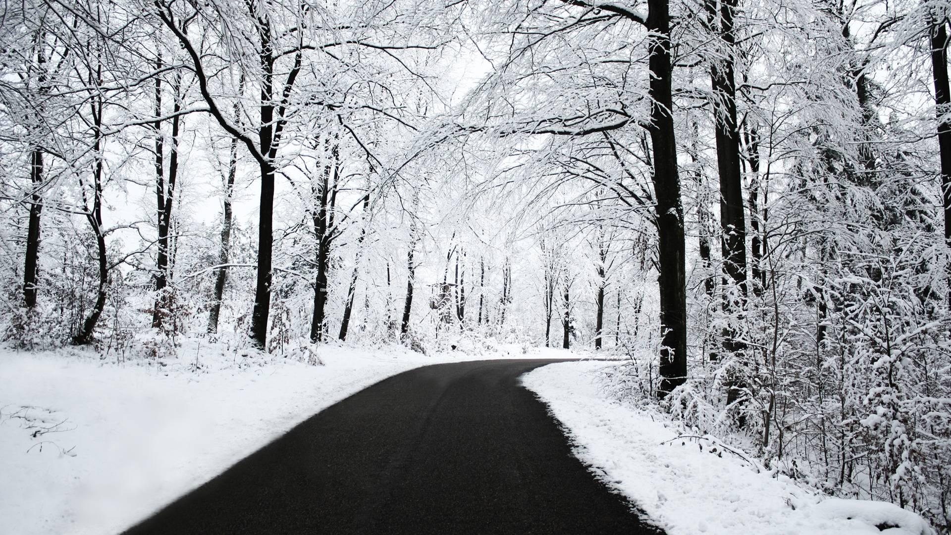 winter snow scenes wallpapers - wallpaper cave