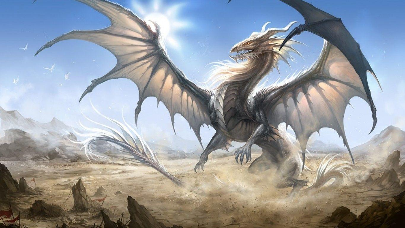 White Dragon Wallpaper 76 images  Get the Best HD