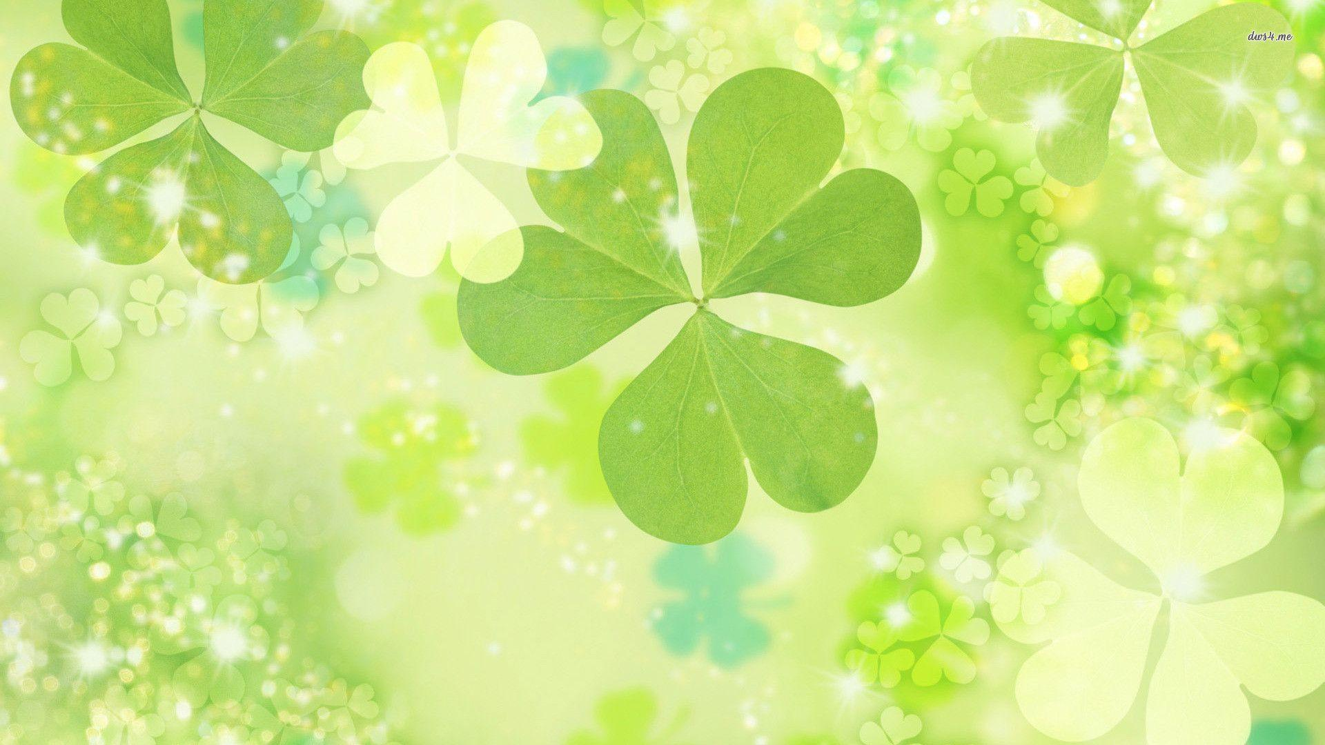 Image For > Four Leaf Clover Wallpapers