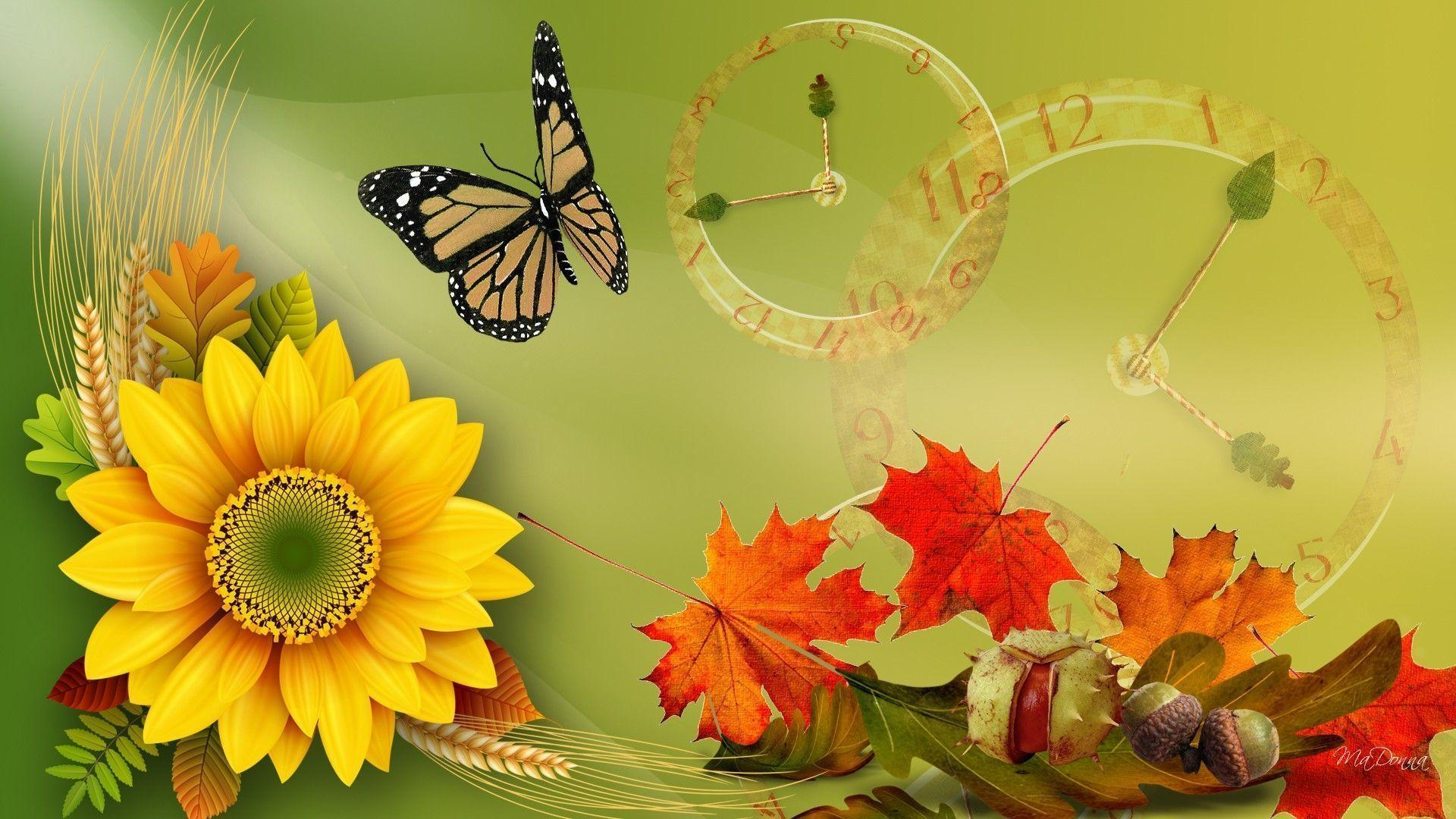 Sunflower desktop wallpapers free wallpaper cave for Sfondi autunno hd