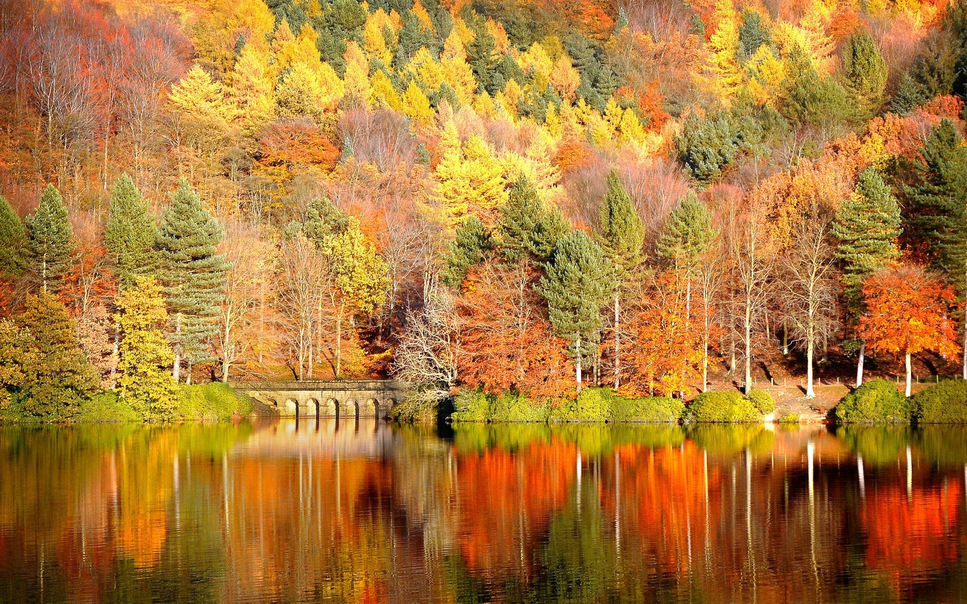 fall wallpaper widescreen monitor - photo #32