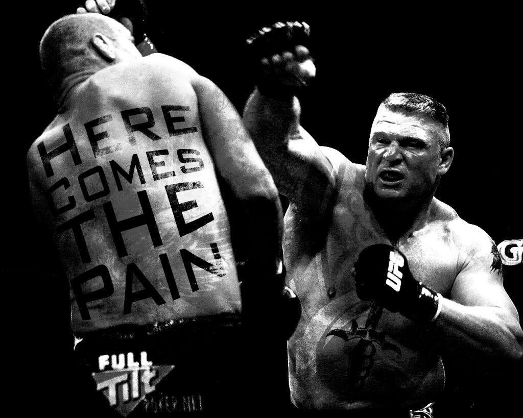 Wwe Superstar Brock Lesnar Wallpapers 18279 Free HD Desktop