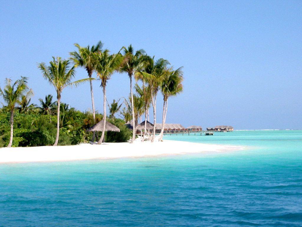 Hd Tropical Island Beach Paradise Wallpapers And Backgrounds: Tropical Beaches Wallpapers