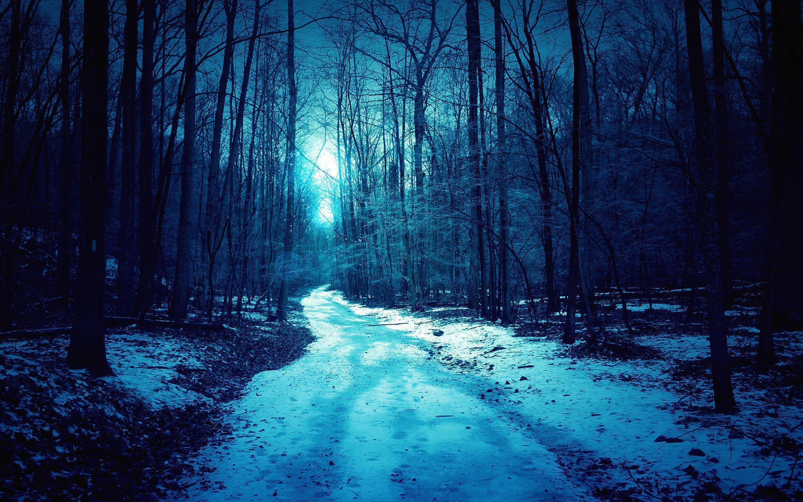 Winter Night Wallpapers Wallpaper Cave