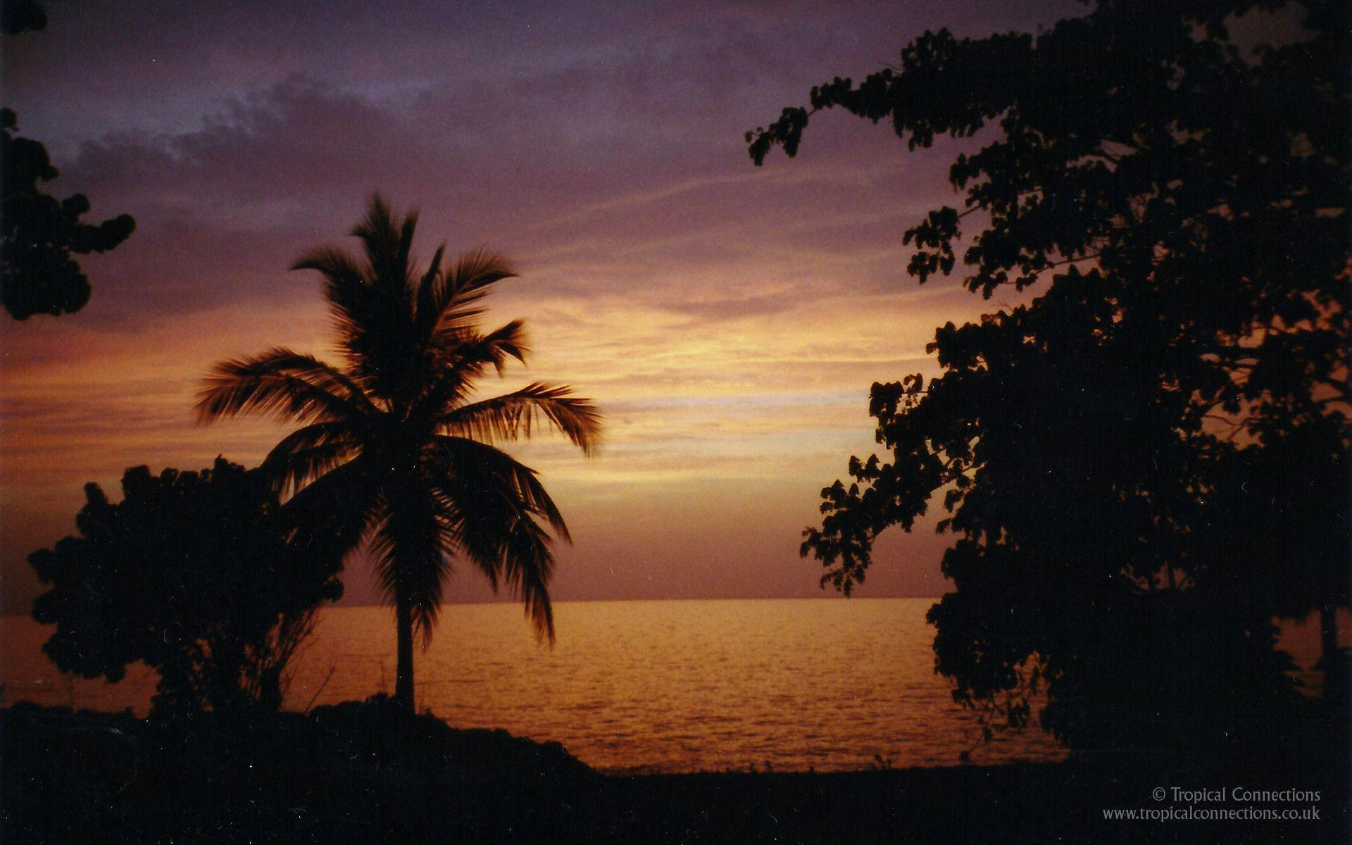 Free Wallpaper – Sunset in Jamaica - Tropical Connections