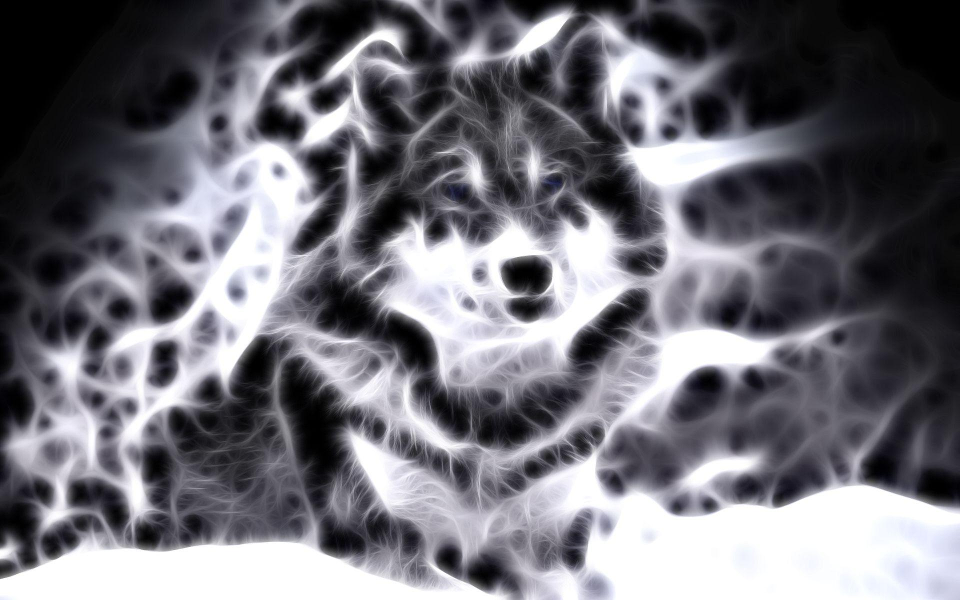 Wallpapers For Cool Animal Wallpaper Light Wolf