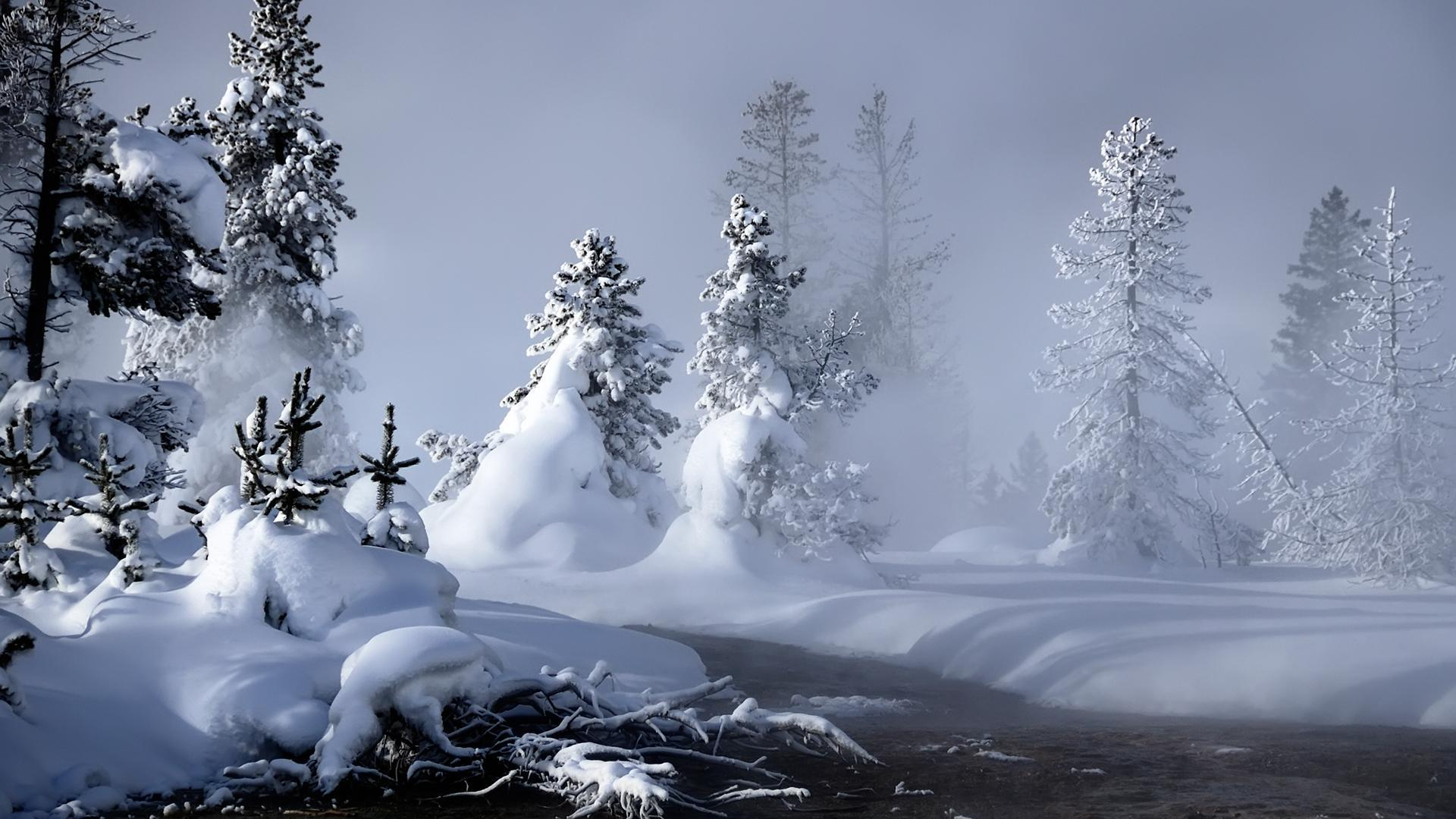 Download Winter 10493 1920x1080 px High Resolution Wallpaper ...