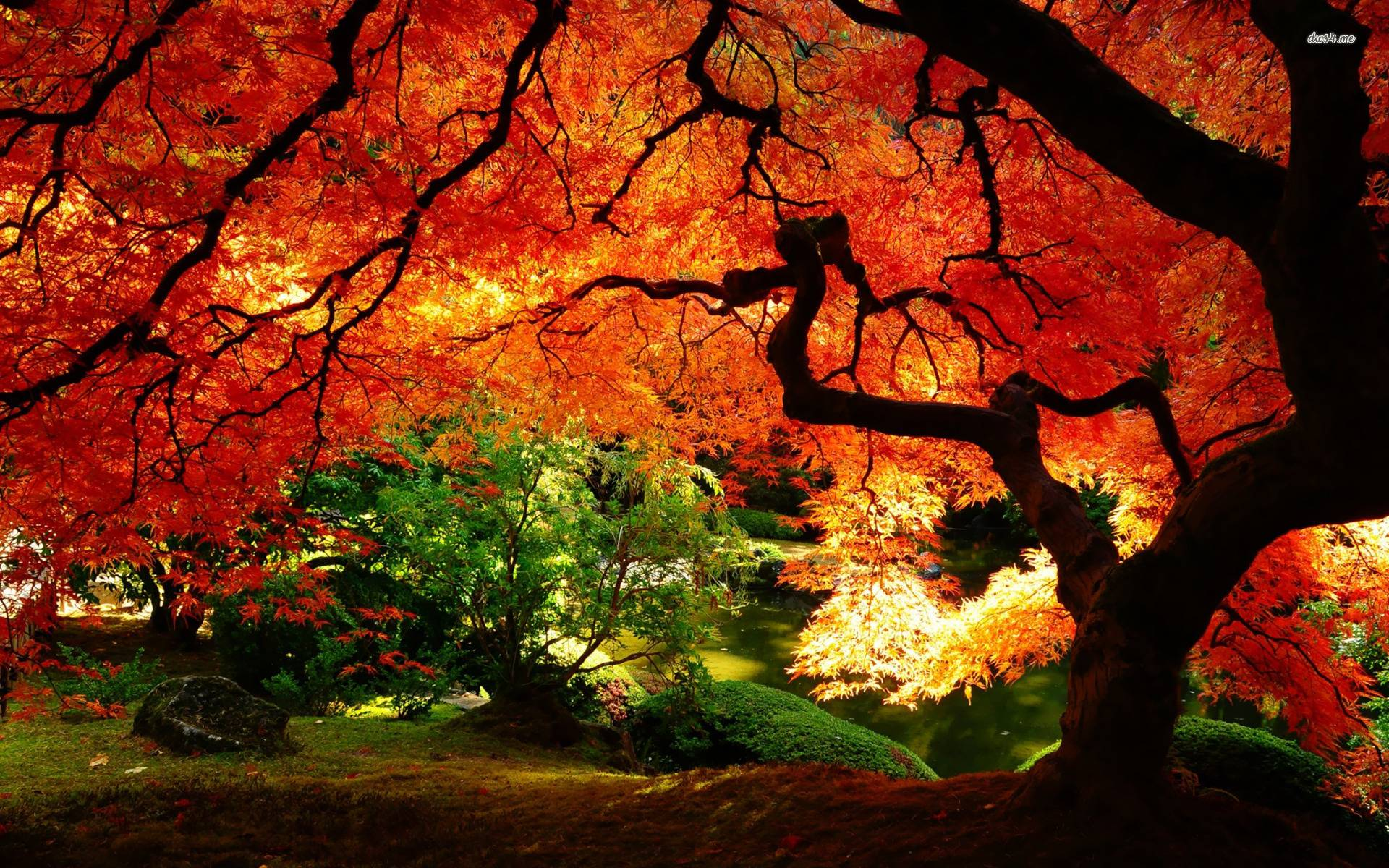 autumn landscape wallpaper nature wallpapers