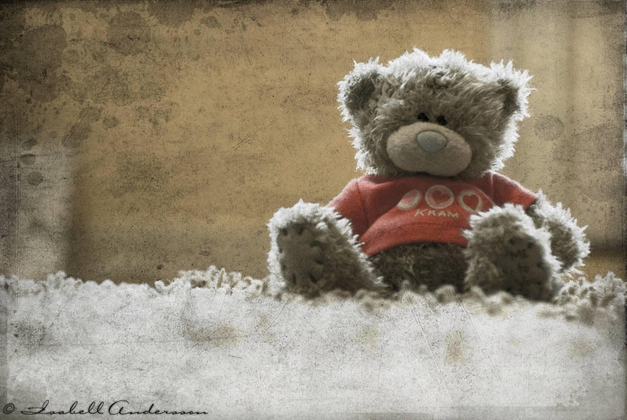 Teddy Bear Wallpapers Wallpaper Cave