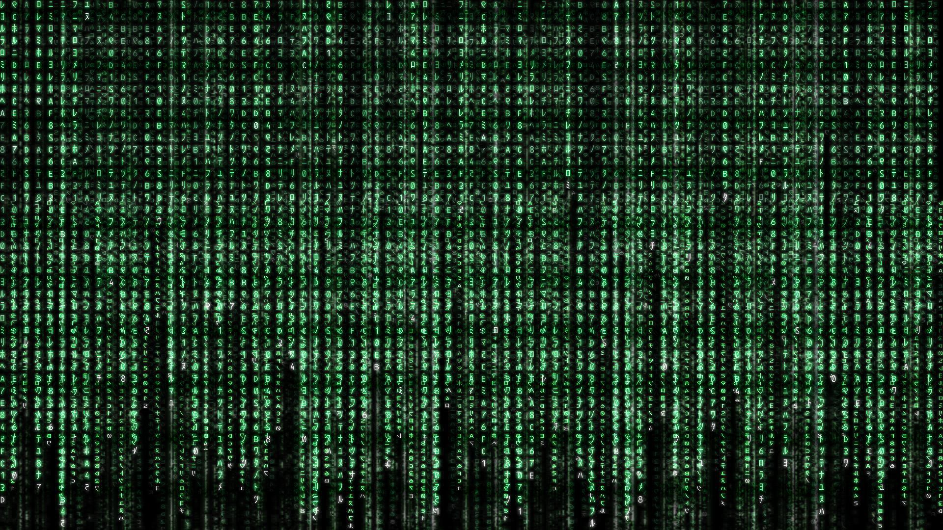 Movie the matrix Wallpaper 1920x1080 | Hot HD Wallpaper