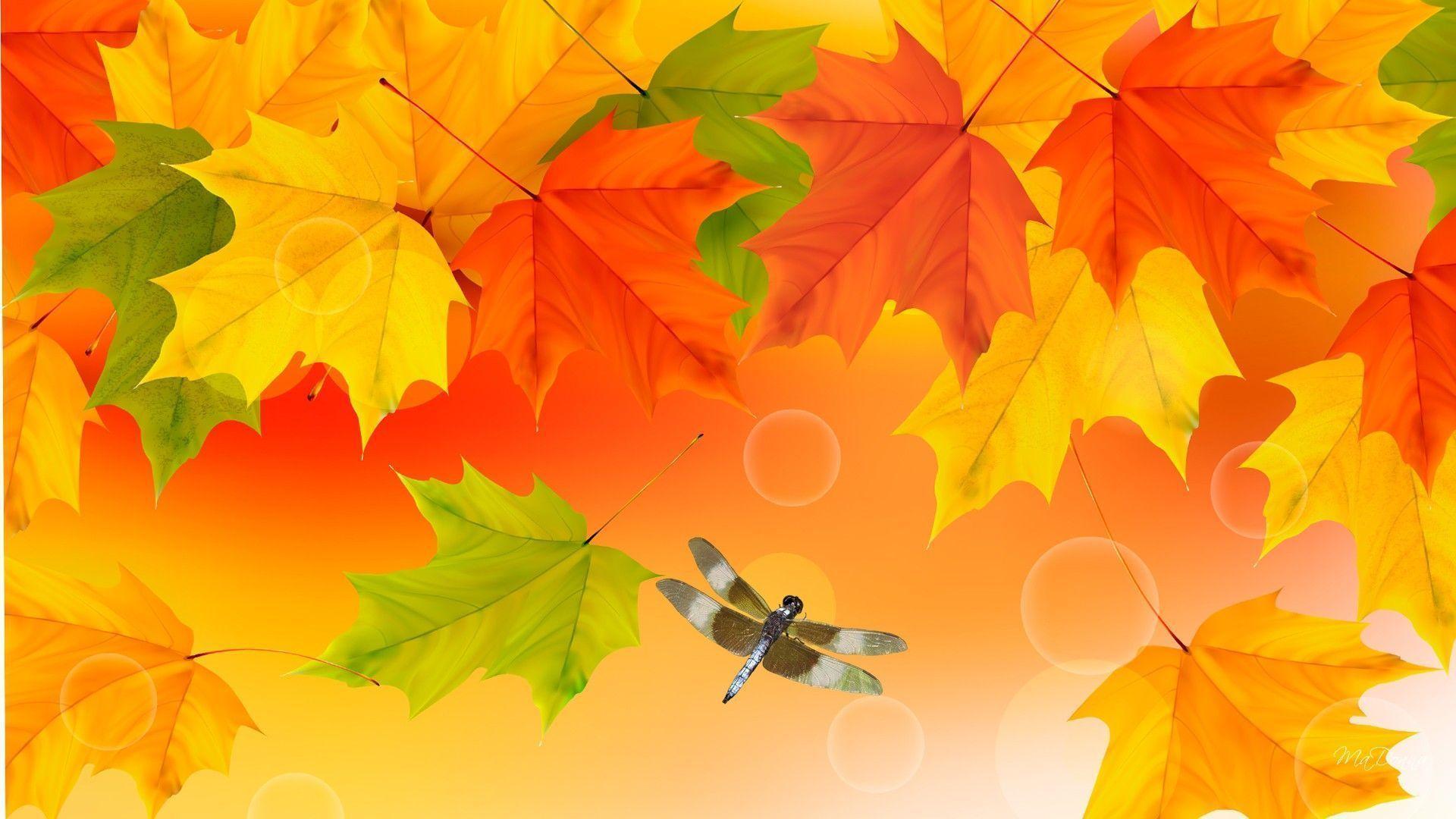 Fall Colors Wallpaper Backgrounds - Wallpaper Cave